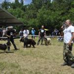 Видео – Първи национален събор на овцевъдите в България
