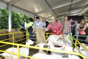 Изложители на кози 2013